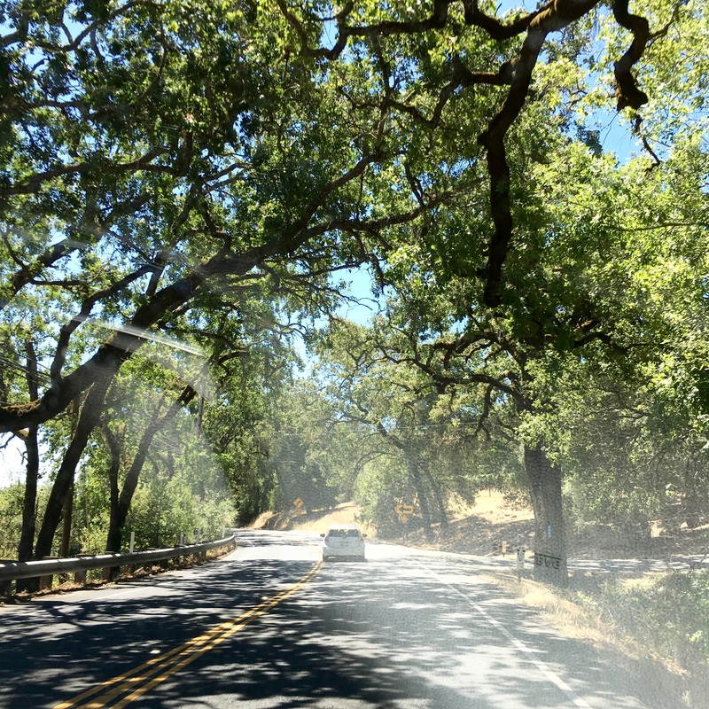 the scenic route, Napa