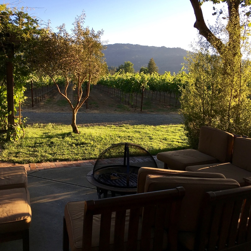 the view of the vineyard from thepatio at the Harvest Inn, Napa